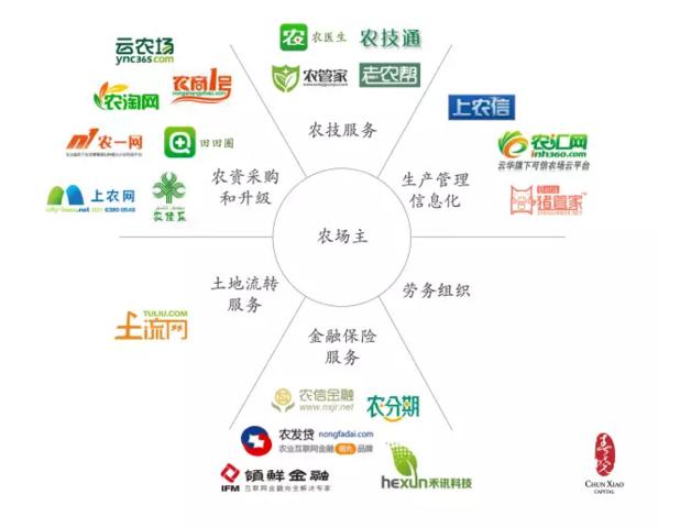 """农业互联网是该 """"进城"""" 还是 """"下乡""""?"""